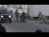 Shocking footage shows Israeli police officers pushing Palestinian man out of his wheelchair
