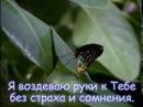 """Клип на песню """"Совершенный БОГ"""" - (с титрами) мой монтаж"""