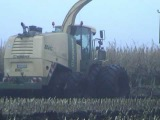 Krone Big X 1100 bei der Maisernte - the strongest Forage harvester of the world with 1100PS