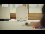 Инновационные очистители воздуха AIRFREE.