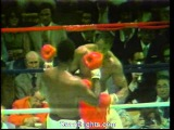 Larry Holmes fights Roy TIGER Williams RARE