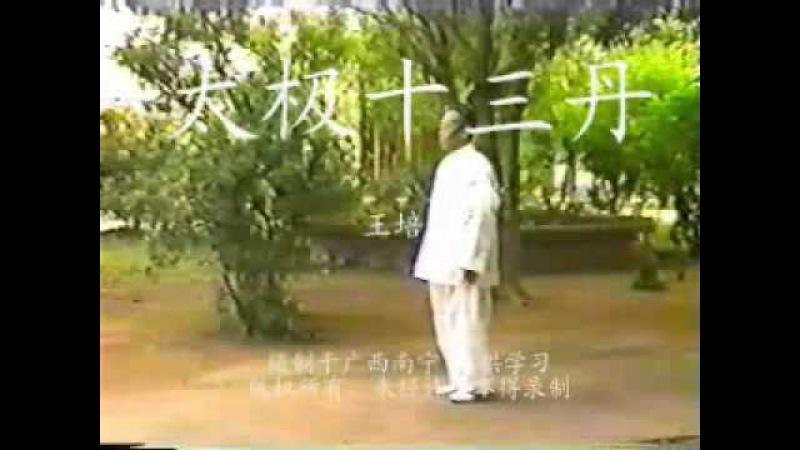 Taiji Shisan Dan Taiji 13 Elixirs I Wang Peisheng