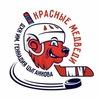 """ДХК """"Красные Медведи"""" им. Геннадия Цыганкова"""
