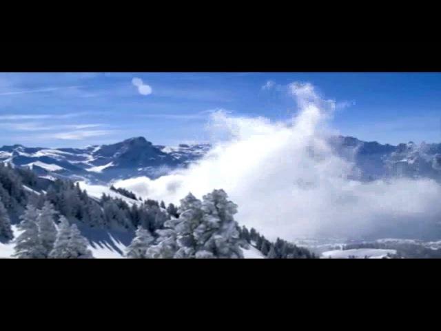 Seba - Snow