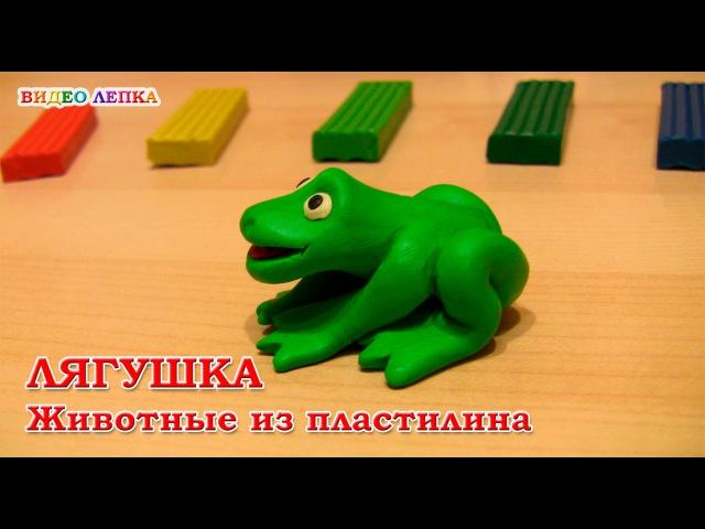 Лягушка из пластилина | Видео Лепка » Freewka.com - Смотреть онлайн в хорощем качестве