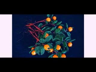 Бисероплетение Апельсиновое дерево из бисера мастер класс