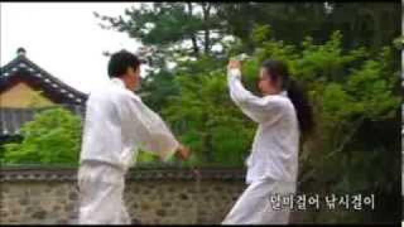 한국택견협회 홍보영상 유튜브