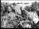 Нарва Ивангород Кингисепп август 1941