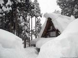 Gerard Lenorman - Tombe la neige