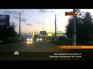 Первая передача на НТВ. Выпуск №228 (22.11.2015)
