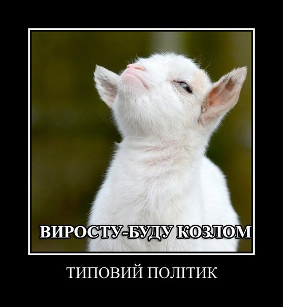 Госкино запретило показ в Украине еще двух российских сериалов и одного фильма - Цензор.НЕТ 9317