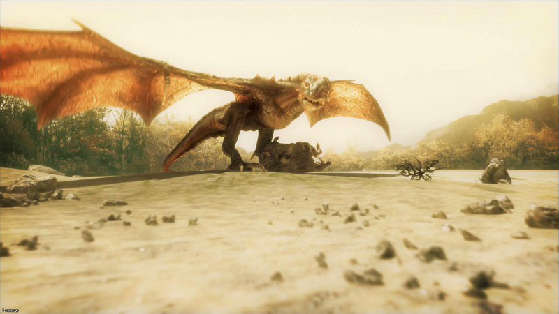 Divinity II: Ego Draconis (2009) PC| Repack от Druid - Скриншот 3