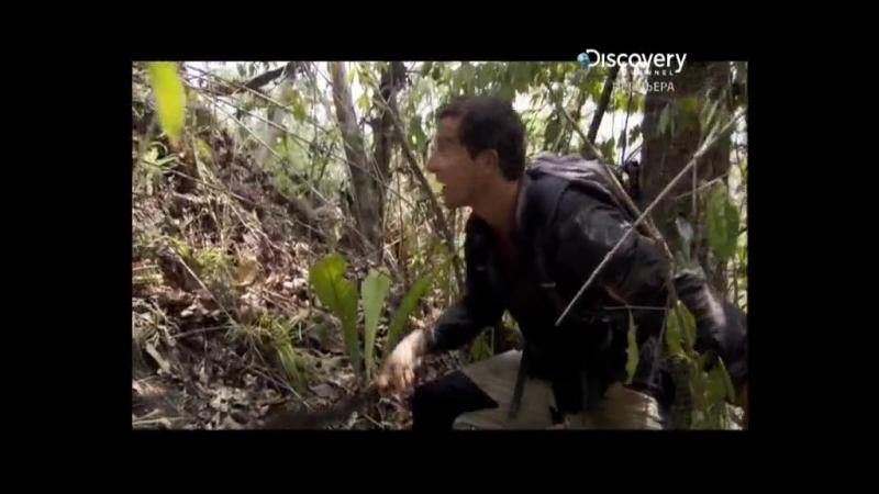 Беар Гриллс: По стопам выживших (1 сезон:1 серия)