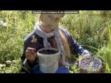 Моя доченька!!!!!!! под музыку Фаворская Ольга - Доченька. Picrolla