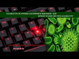 Как почистить клавиатуру или клавиатура источник бактерий и микробов