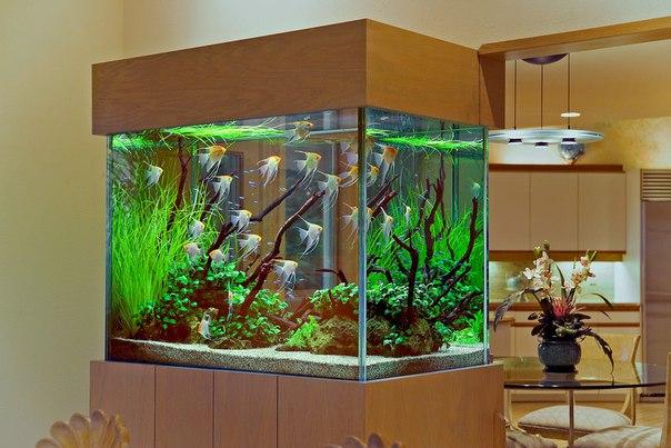 Как сделать своими руками декор для аквариума