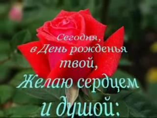 Нежная песня поздравления с днем рождения и много роз!! — Видео@Mail Ru клип онлайн