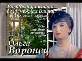 Ольга Воронец - Расцвела у окошка белоснежная вишня