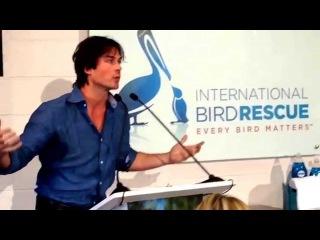"""Actor/activist Ian Somerhalder joins Dawn Wildlife to celebrate """"We All Love Wildlife"""""""