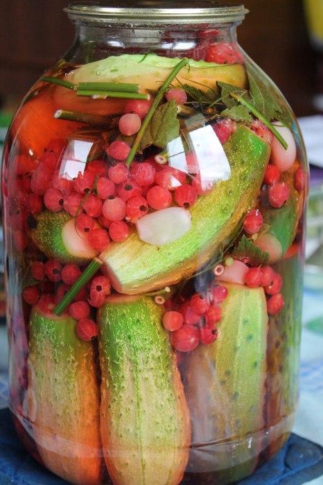 Заготовки на зиму из различных овощей-Огурцы, маринованные с красной смородиной