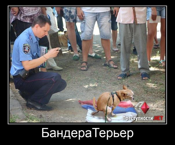 Россия продолжает судебный фарс над гражданами Украины, которые стали политзаключенными в РФ, - МИД - Цензор.НЕТ 715