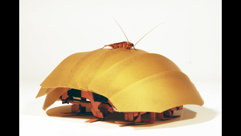 Робот-таракан CRAM