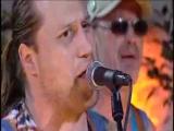 Hayseed Dixie - Ace of Spades