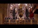 Johann Sebastian Bach Matth