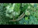 Тропический рай посреди Сибири