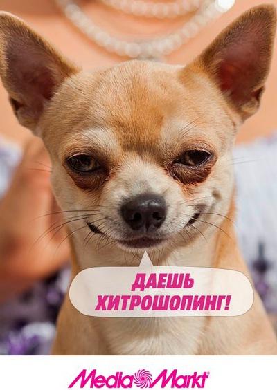 Сок Садочок