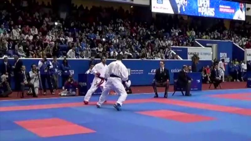 -75 Kg. AGHAYEV (AZE) - HORUNA (UKR). Open de Paris Karate 2015