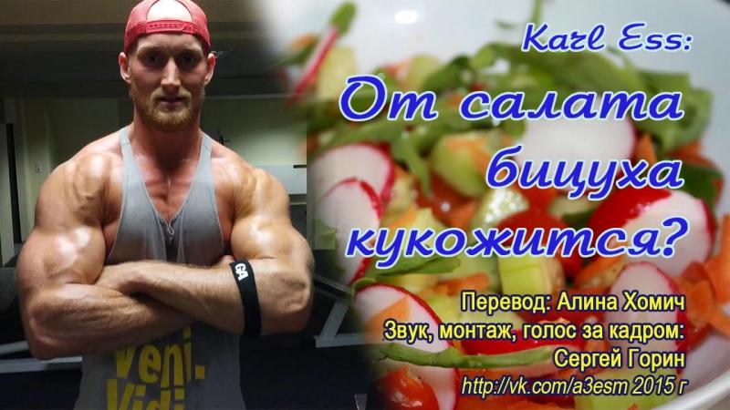 Карл Эсс: От салата бицуха кукожится? (Karl Ess)
