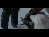 Белый плен (2006) ↓Подпишись↓