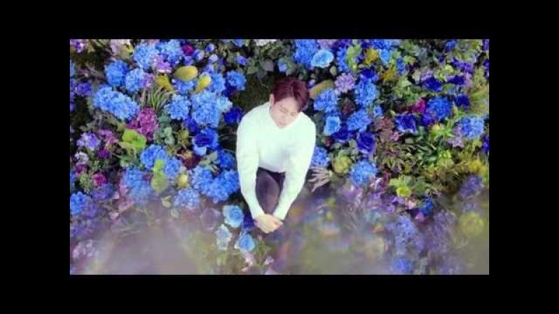 BEAST(비스트) - 'Butterfly' MV
