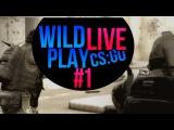 ИГРАЕМ ММ В WILD PLAY LIVE #1 (cs:go)