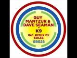 Dave Seaman, Guy Mantzur-K9(Solee remix)
