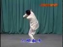 Cheng Style Baguazhang Bagua interlink palm with swimming body Du thân Bát quái chưởng