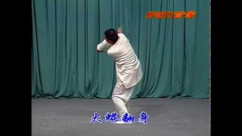 Cheng Style Baguazhang Bagua interlink palm with swimming body-Du thân Bát quái chưởng