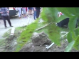 Страшное ДТП в Василькове.Один ребёнок погиб , вторая девочка в реанимации