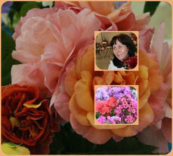 фото самого красивого женского личика сосущего член: