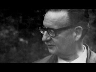 Allende, mi abuelo allende (tambutti, 2015)