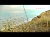 Красивая музыка, легкая, спокойная, вдохновляющая долгий плейлист relaxdaily Океанский бриз