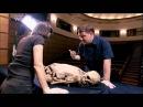 История мумий Самые древние мумии в мире Бездомная мумия