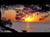Франц Шуберт - Вечерняя серенада F. Schubert - Serenade