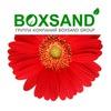 Boxsand Boxsand