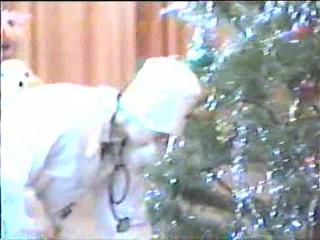 Новогодняя елка в детском саду) СНИИСХ)))