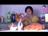 Waking Love Up Capitulo 10/Mundo Asian y Marii Lakorn