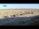 Как человек уничтожил Аральское мореDeath of the Aral sea