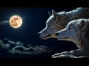 Clair de Lune Claude Debussy Extended Version 2 HOURS Classical Music Piano Studying