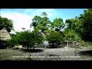 ВЕЧНОЕ ЛЕТО 2013 Д Ф о жизни на острове